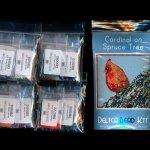 cardinal on spruce tree larger panel peyote seed bead pattern pdf or kit diy bird maddiethekat designs 2