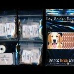 golden dog 01 tiny mini amulet bag peyote bead pattern pdf or kit diy maddiethekat designs 2