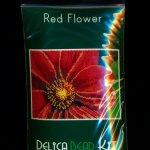 Red Flower Larger Panel Seed Bead Peyote Pattern PDF or KIT DIY-Maddiethekat Designs