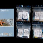 Starfish (Panel or Amulet Bag) Peyote Bead Pattern PDF or KIT DIY-Maddiethekat Designs