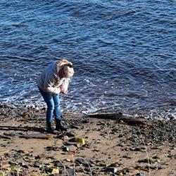 Beachcombing on Sunday