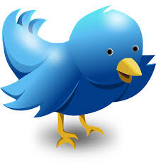 """13 steps you need to follow if you """"don't get"""" twitter"""