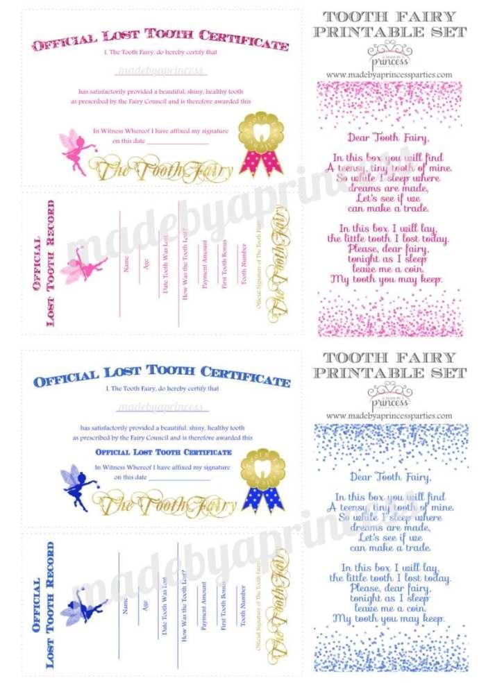 diy tooth fairy kit printables pink blue2