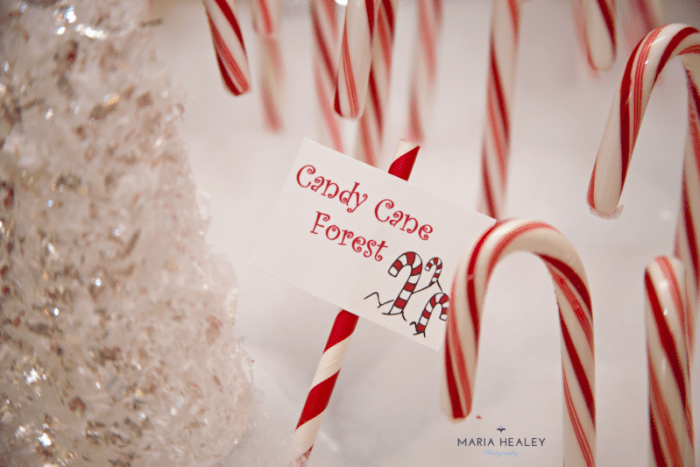 candy cane forest sign wm