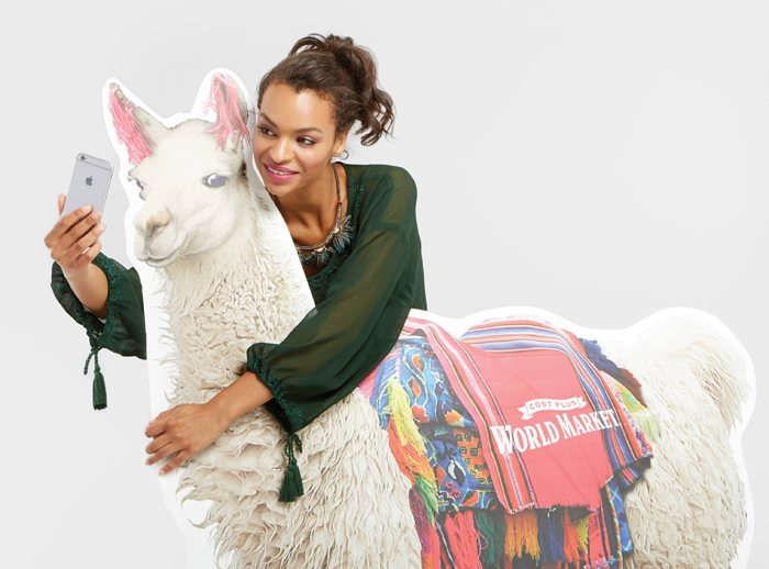 National Llama Day World Market Event Take a Selfie with a Llama