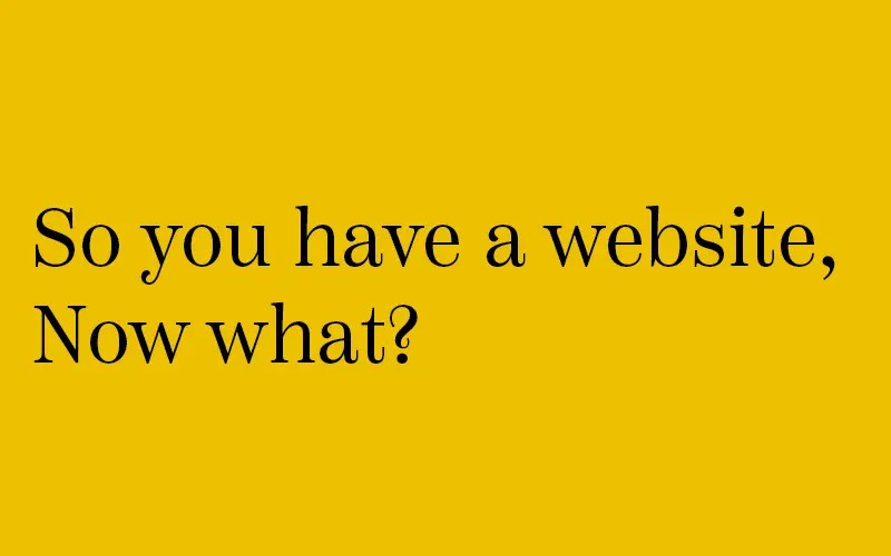 So you have a website, now what
