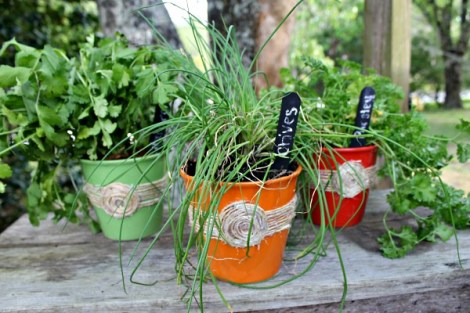 DIY-Herb-Pots-Using-Dollar-Store-Items