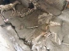 Pompei Civita Giuliana Scoperto terzo cavallo (4)