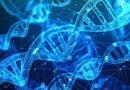 Vinyl, ecco il software che rende più veloce l'individuazione delle malattie genetiche