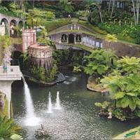 A Lush Green Madeira Island Travel Guide