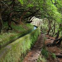 The north of Madeira Island