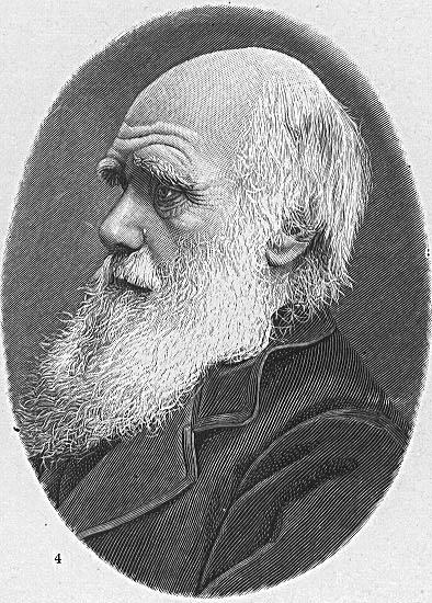 A morte de Darwin