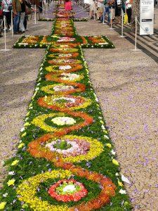Flower Festival 2013 (33)