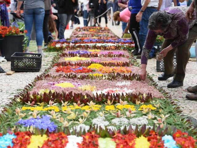 SEE HOW FUNCHAL IS DECORATED FOR THE FLOWER FESTIVAL