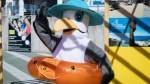 SEAGULL 'MARISOL' IS THE NEW MASCOT OF FRENTE MAR FUNCHAL