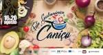 Festivals - Caniço and Seixal