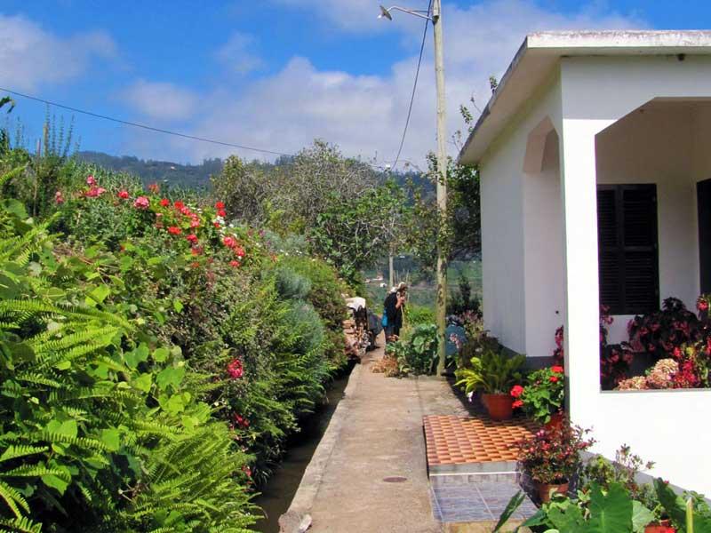 levada do castelejo Madeira wandeling door Cruz