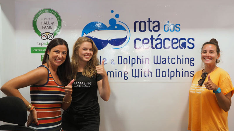 rota dos cetaceos and madeiramazing in office