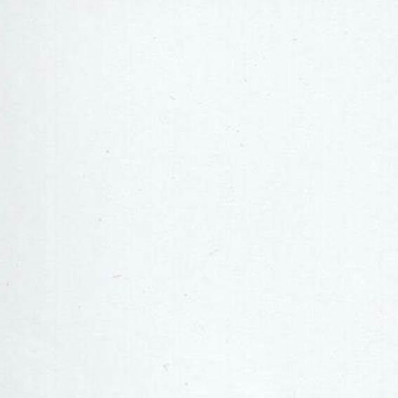 Formica Blanco 12