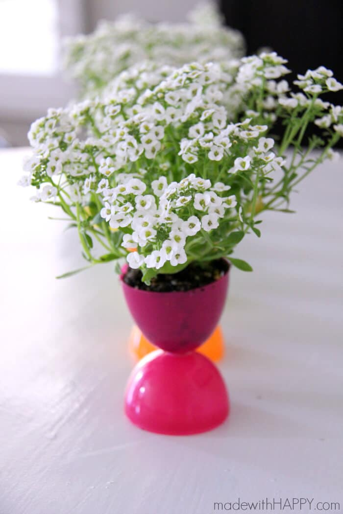 Plastic Easter Egg Flower Pots Made With Happy