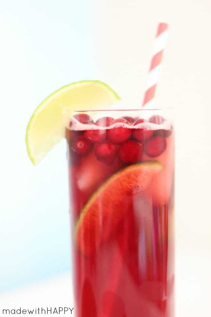 cranberry-ginger-cocktail-5