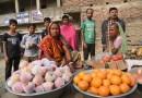 Life in Bhramarpura Village of Nepal