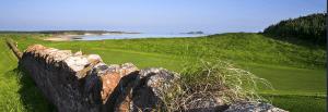 Wonderful golf course [photo courtesy of club website]
