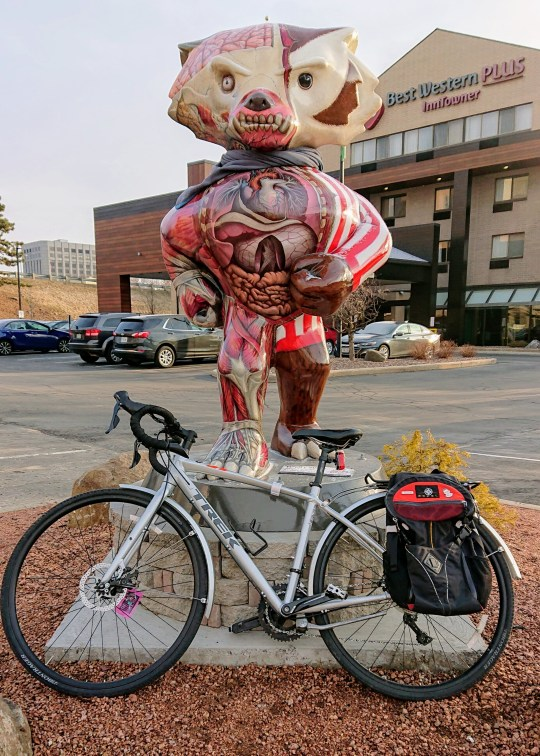 A commuter bicycle leaning against a statue of Bucky Badger