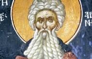 Venerabile Arsenio il Grande