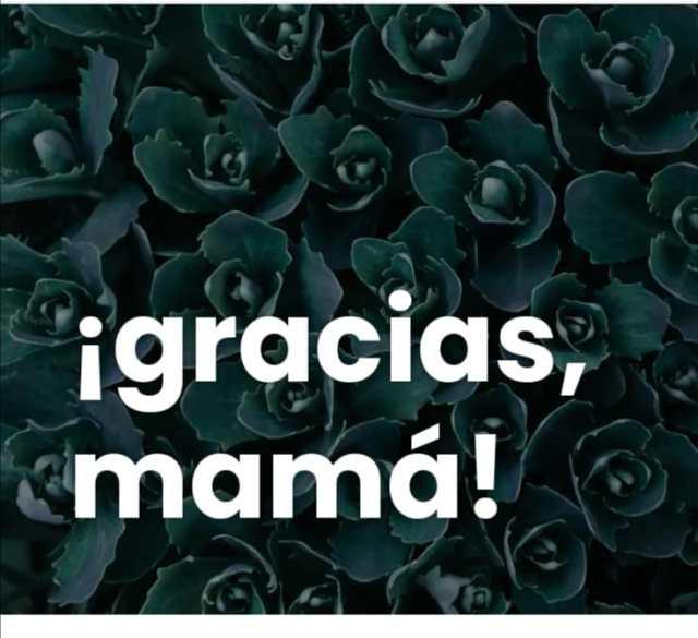 https://tranquilitamente.com/2021/04/23/gracias-mama/