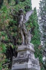 SacramentalSan Isidro0090