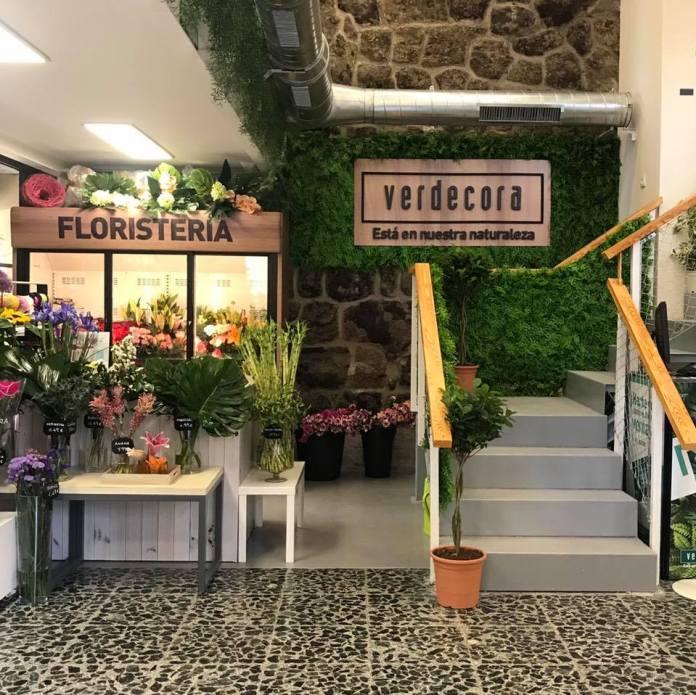 Locura por los cactus en Madrid: cuatro tiendas donde no pincharás 3