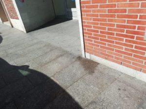 Botellas municipales para que los vecinos de Sanse limpien los orines de sus perros 2