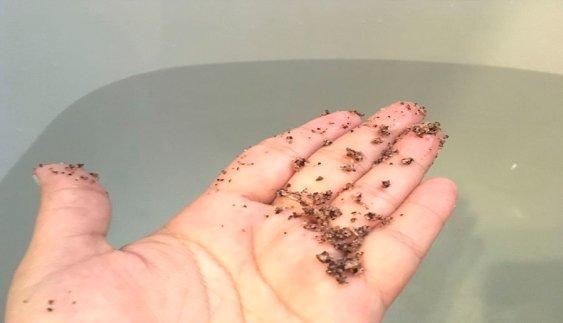 scrub love bañera exfoliante natural coco y arándanos cosmetica organica 6