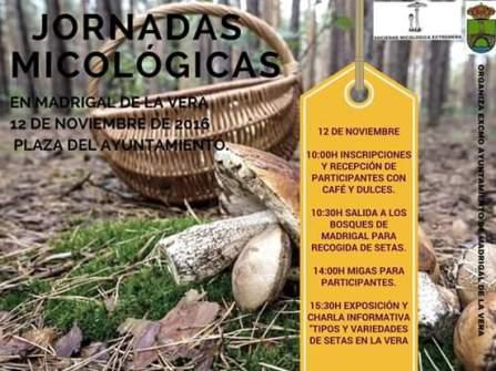 Jornadas Micologicas - Ayto. Madrigal de la Vera