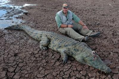 2019-Crocodile-DSC_0323