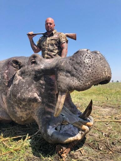 2019-Hippo-image2