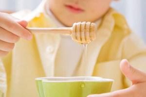 madu untuk bayi