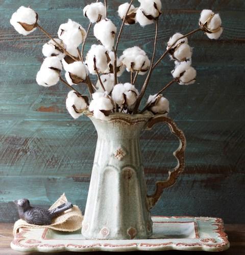 Small Cotton Stems