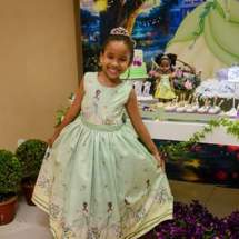 A Princesa e o Sapo