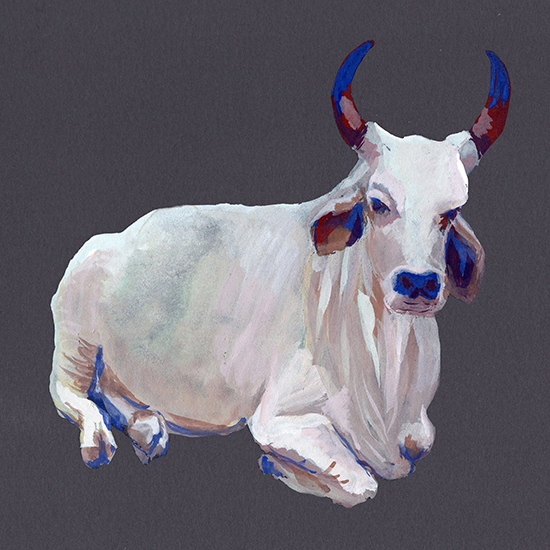 illustration gouache vache sacree Maelle Joly