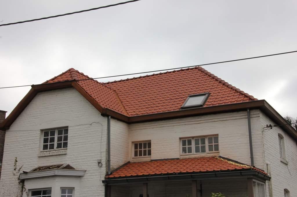 Renovatie Pannendak
