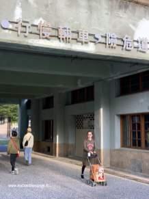 À Taïwan, les chiens semblent avoir du mal à marcher :-D