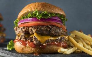 「ハンバーガー」の画像検索結果