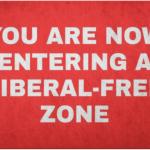 Liberal Free Zone | MAGA Doormat | MAGA-Shop – $28.99