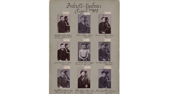 Inbrotts-tjufvar 1895