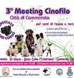 meeting cinofilo