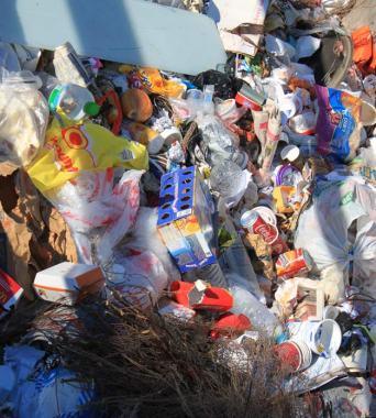 Inhalte  städtischer Mülltonnen