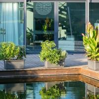 Ako fungujú samozavlažovacie interiérové kvetináče