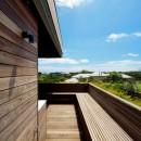 Linear House 11